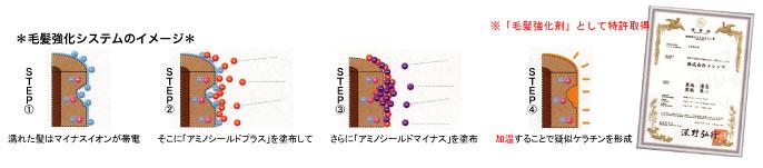 毛髪強化システムのイメージ