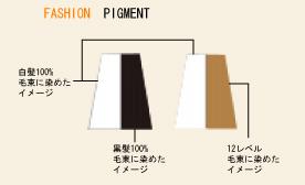コタ カラーチャート