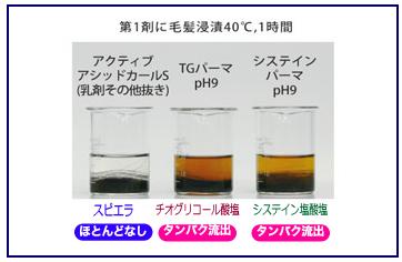 タンパク質流出実験